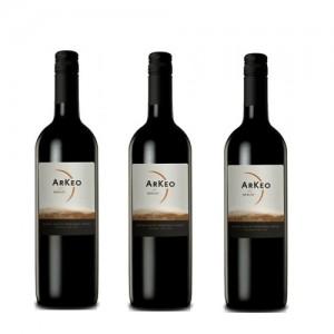 Arkeo Shiraz - Rượu vang Chile nhập khẩu
