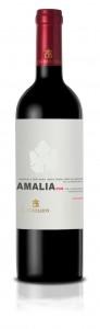 Los Boldos Amalia - Rượu vang Chile nhập khẩu