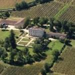 Trung Quốc mua lại vườn nho 37 ha tại Bordeaux